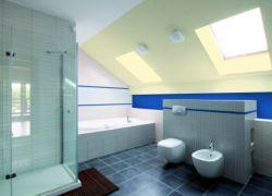 Акрилна боя за стени и тавани