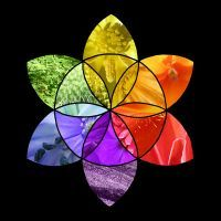 цветовой тест отношений ЦТО