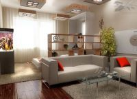 Дизайн комнаты в однокомнатной квартире1