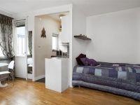 Дизайн однокомнатной квартиры с нишей4