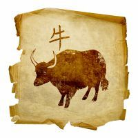 Год быка - характеристика