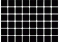 иллюзии восприятия5