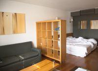 Интерьер гостиной-спальни4