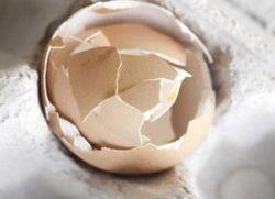 Яичная скорлупа – польза и вред