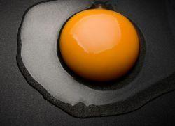 Яичные желтки для похудения