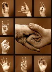 Язык жестов глухонемых