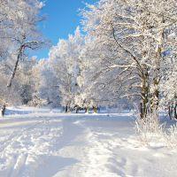 К чему снится белый, чистый снег?