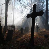 К чему снится ходить по кладбищу?
