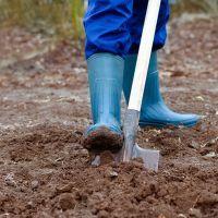 К чему снится копать землю?