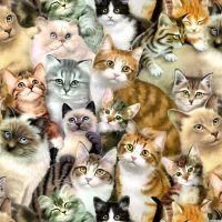 К чему снится много кошек?