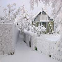 К чему снится много снега?