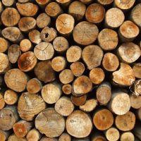 К чему снятся дрова?