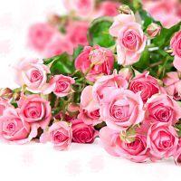 К чему снятся розы?