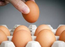 К чему снятся тухлые яйца?