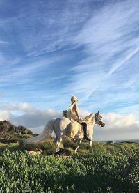 Леди Гага успела прокатиться на лошадке