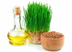 масло зародышей пшеницы в капсулах применение