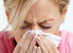 мехлем от обикновена настинка