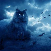 Мистические животные