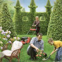 Можно ли работать в саду в троицу?