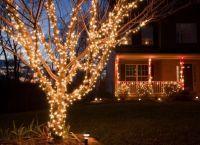 Новогодние украшения для дома1