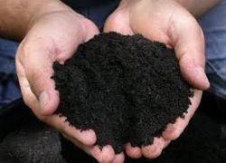 отколкото за наторяване на почвата през есента