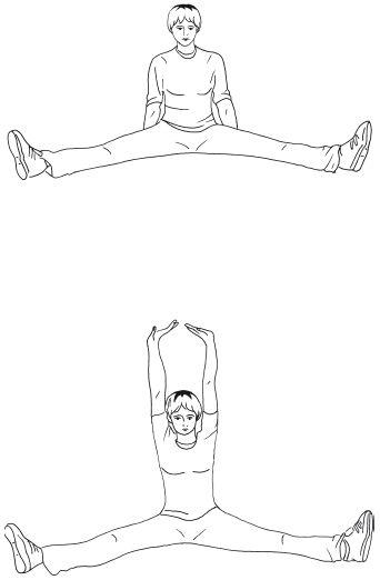 Основной комплекс упражнений часть 4