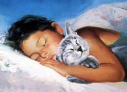 Почему нельзя спать с кошкой?