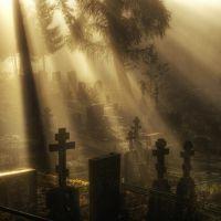 Почему снятся умершие родственники?