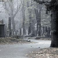 Примета - упасть на кладбище