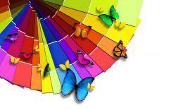 что означают цвета в психологии