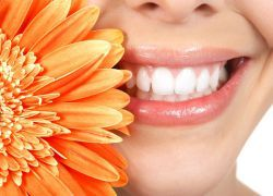 dinți de atele