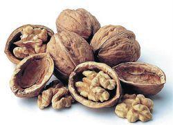 Скорлупа грецкого ореха – применение