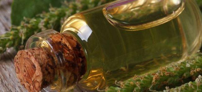 Сок подорожника – польза и вред