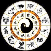 Совместимость знаков зодиака по годам