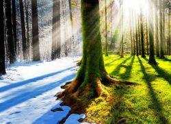 Сретение господне – приметы и обряды