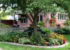сенкоустойчивостта за градината