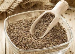 Тмин – лечебные свойства и противопоказания