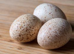 Утиные яйца - польза и вред
