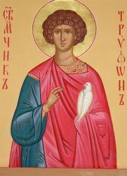 В чем помогает святой трифон?