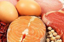 В каких продуктах содержится протеин?
