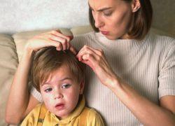 Вши у детей - лечение в домашних условиях