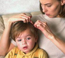 Вши у ребенка - что делать?