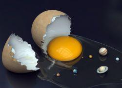 Выкатывание яйцом - толкование белка