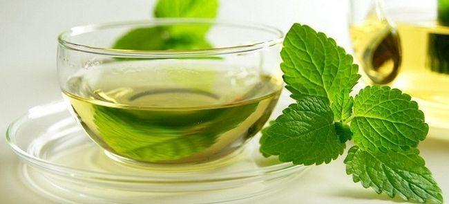Зеленый чай с мятой – польза и вред