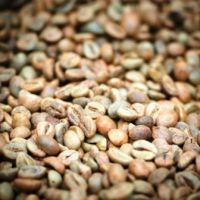 Зеленый кофе: правда или миф?
