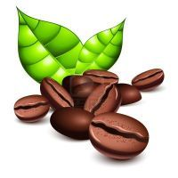 Зеленый кофе - состав