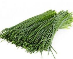 Зеленый лук на зиму