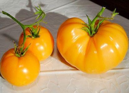 Желтые помидоры - сорта