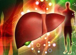 Жировой гепатоз печени – лечение