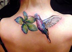Значение тату колибри